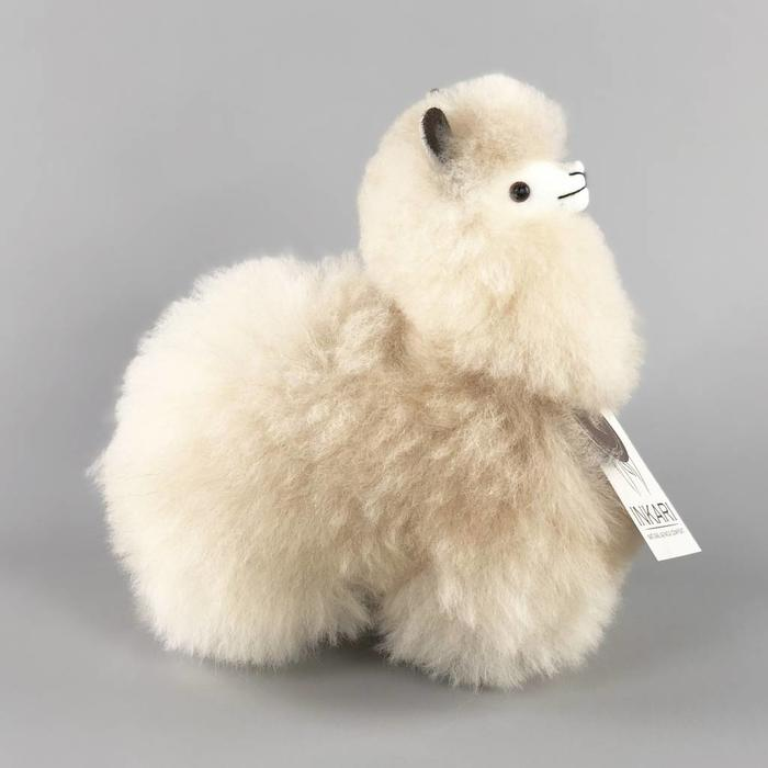 Modelfoto Small alpaca beige
